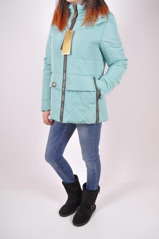 Куртка женская из плащевки демисезонная (цв.35) Btelass Размеры в наличии : 44,46 арт.1610