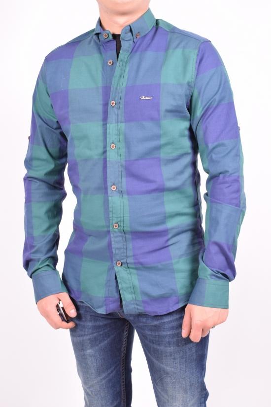 Рубашка мужская  стрейчевая -зеленый/синий (slim fit)  Enisse Размеры в наличии : 42,44 арт.EGUB1233-ZB