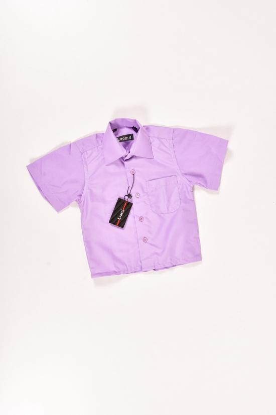 Шведка для мальчика Lagard (Cotton 65%,Polyester 35%) Размер ворота в наличии : 25, 26, 27 арт.B-SKY0661K