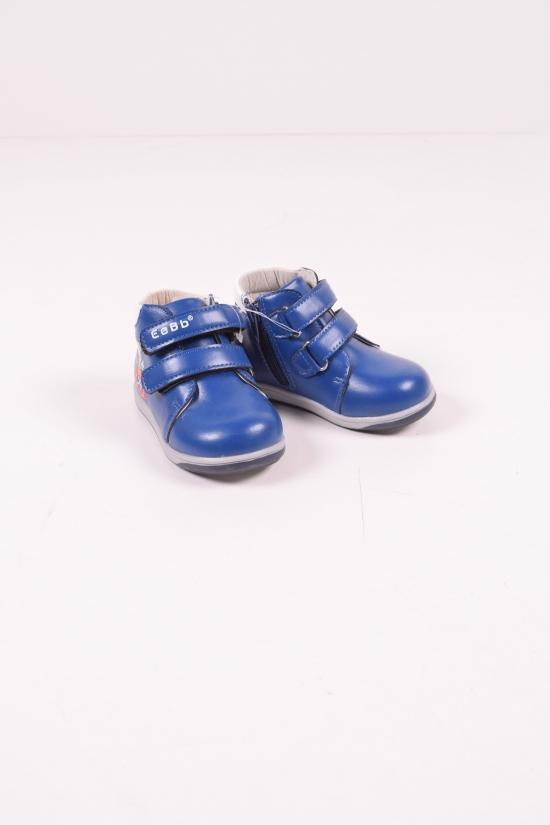 Ботинки для мальчика демисезонные (цв.cиний) EeBb Размеры в наличии : 21,22,23,24,25,26 арт.D59-3