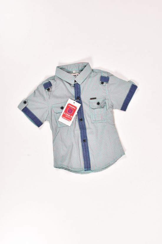 Шведка для мальчика (цв.бирюзовый) Роста в наличии : 86,92 арт.729