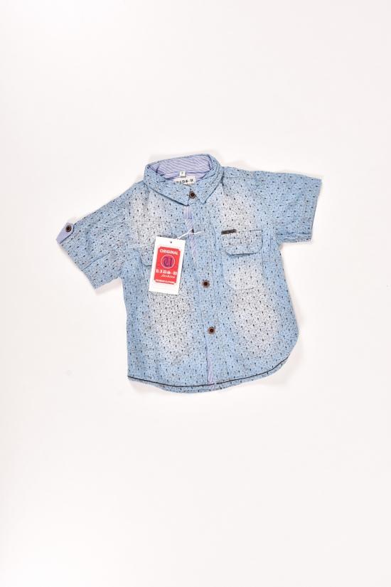 Шведка для мальчика котоновая (цв.голубой) Рост в наличии : 92 арт.7719,