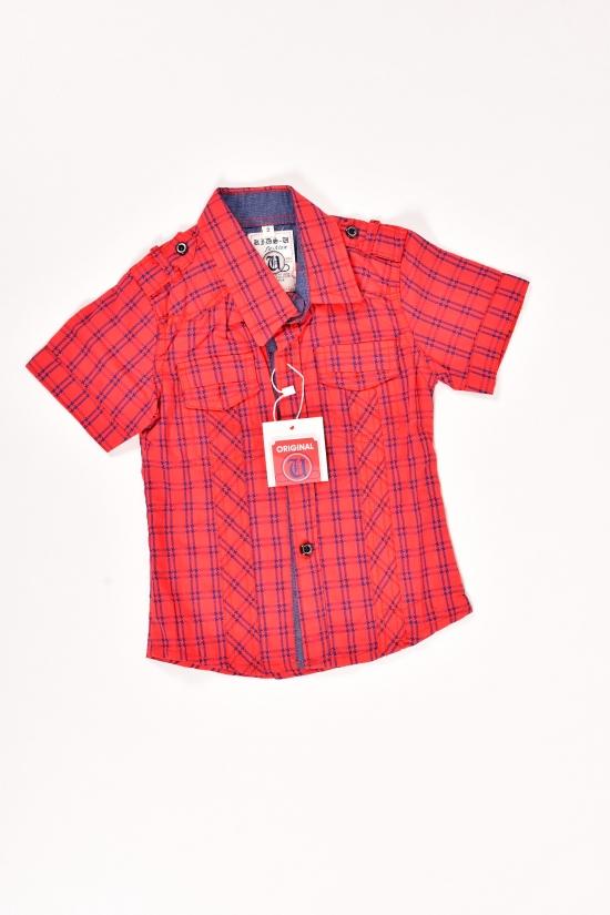 Шведка для мальчика  (цв.красный)  100% cotton ORIGINAL Рост в наличии : 92 арт.506