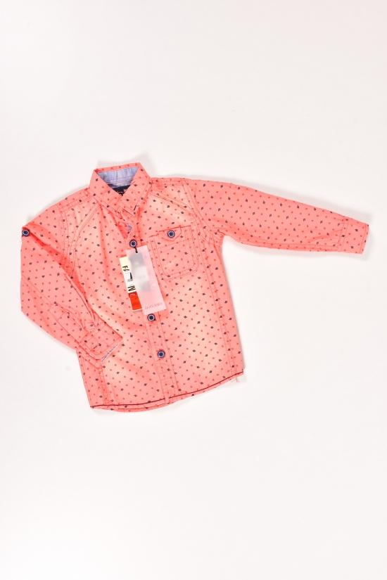 Рубашка для мальчика  100% coton ETERNO Роста в наличии : 92,98 арт.ABK010