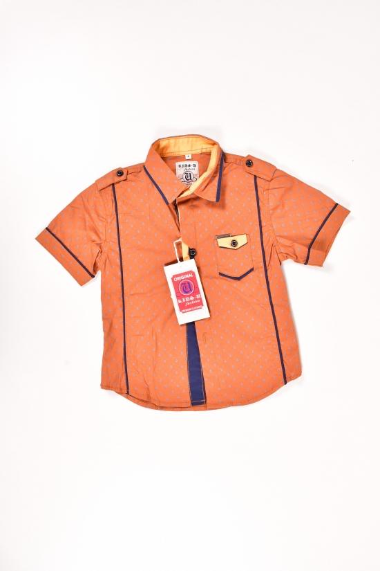 Рубашка для мальчика котоновая (цв.коричневый) Роста в наличии : 92,104 арт.7057