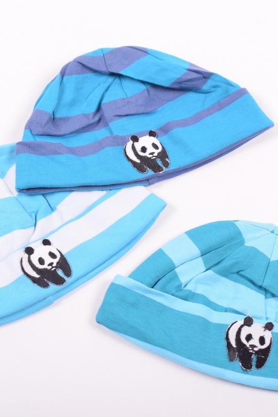 Шапка детская арт.Панда