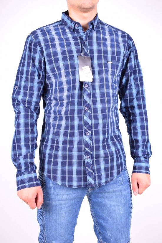 Рубашка мужская  (цв.синий) 100% котон MANEVRA Размеры в наличии : 44,46 арт.16097