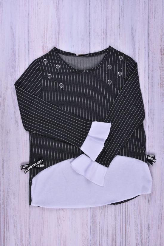 Блуза женская  (цв.т/серый) ESTASI Размеры в наличии : 44,46,48,50 арт.MAN28