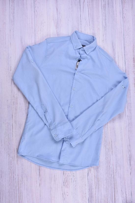 Рубашка мужская(цв.голубой) стрейчевая  Ronex Размеры в наличии : 42,44,48 арт.точка