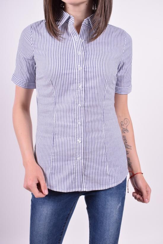 Рубашка  женская (цв.голубой) Размеры в наличии : 40,42,44,46,48 арт.A89001