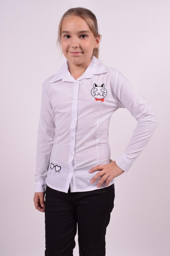 Блузка для девочки  длинный рукав Murdia Kids Роста в наличии : 128,134 арт.5321