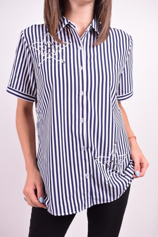 Блузка женская  стрейчевая  BASE Размеры в наличии : 50,52,54,56,58 арт.E6033