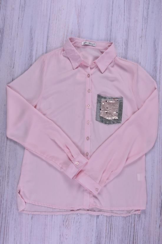 Блуза женская (цв.розовый) шифоновая Qianzhidu Размеры в наличии : 40,42,44,46,48 арт.50527