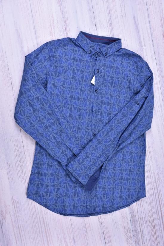 Рубашка мужская (цв.голубой) CUKUR Размеры в наличии : 40,44,46,48 арт.574978916/1