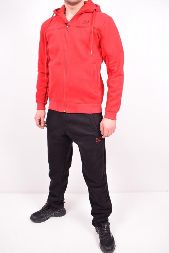 Костюм спортивный мужской трикотажный на флисе (цв.красный) Rowinger Размеры в наличии : 46,48,50,54 арт.201903