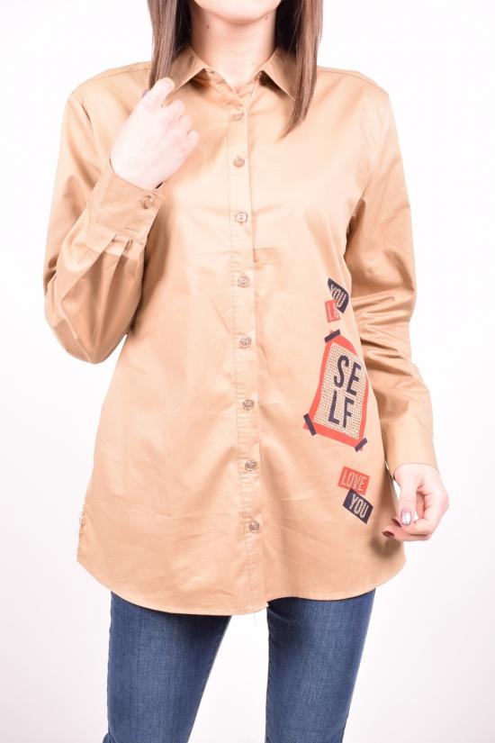 Рубашка женская  (цв.капучино) C&ot Размеры в наличии : 48,50,52,54,56 арт.A1289C
