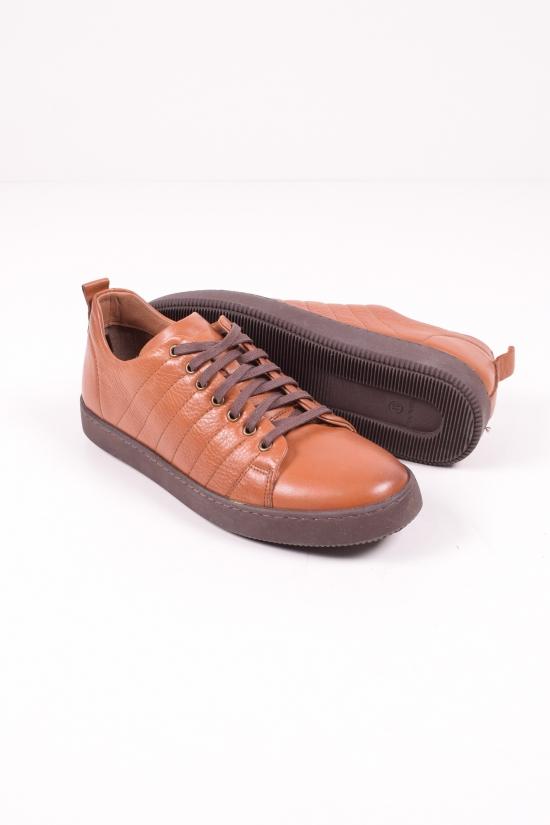 Кроссовки мужские из натуральной кожи (цв.коричневый) BUFFON Размеры в наличии : 40,41 арт.2300