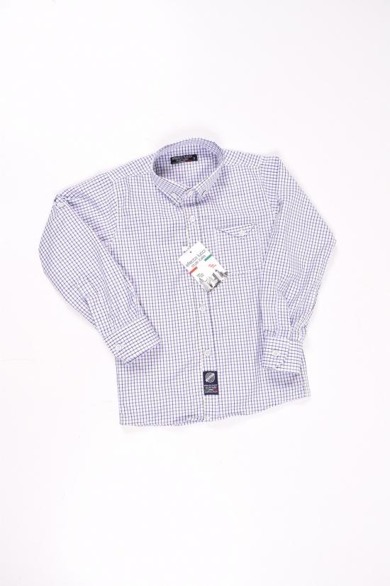Рубашка для мальчика (цв.белый/синий) EFECTO Роста в наличии : 98,104,110,116 арт.3/7
