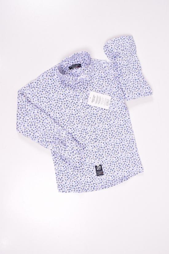 Рубашка для мальчика (цв.белый/синий) EFECTO Роста в наличии : 146,152 арт.8/13