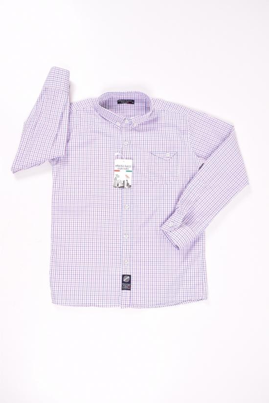 Рубашка для мальчика (цв.белый/синий) EFECTO Роста в наличии : 128,152,176 арт.8/13