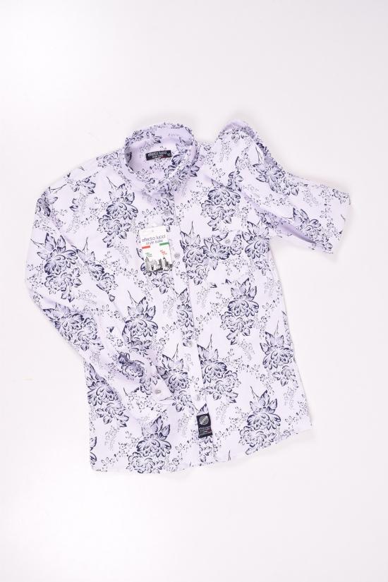 Рубашка для мальчика (цв.белый/синий) EFECTO Роста в наличии : 134,140,146,158 арт.8/13