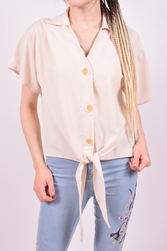 Блузка женская Anne (Polyester 100%) Размеры в наличии : 46,48,50 арт.L6038