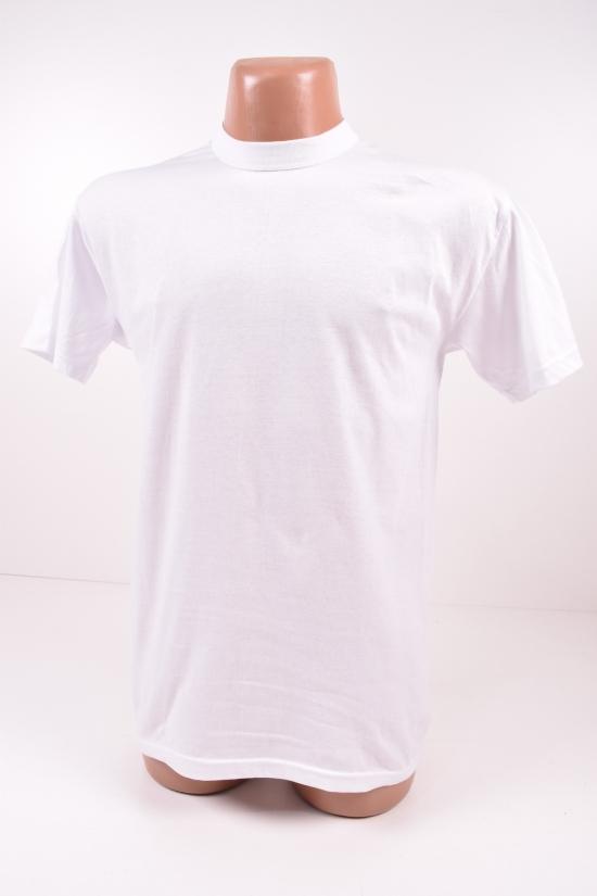 Футболка мужская белая (х/б 100%) №70 размер 54-56 арт.560