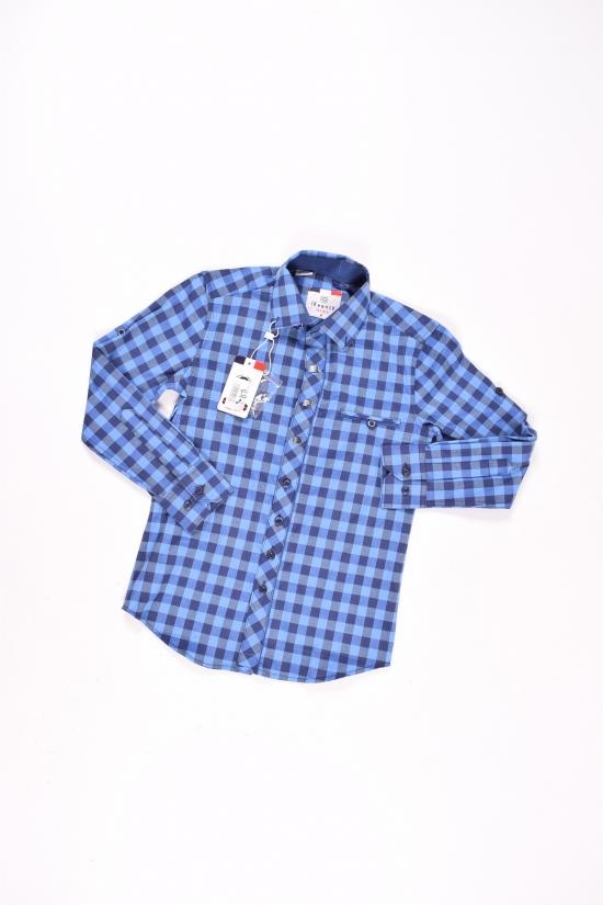 """Рубашка для мальчика """"IKEENZY"""" Роста в наличии : 140,146 арт.B-SDK7547"""