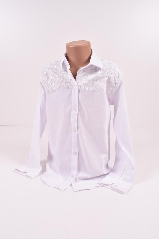 Блузка трикотажная для девочки (цв.белый) PITIKI KIDS Роста в наличии : 140,146,152,158 арт.010010
