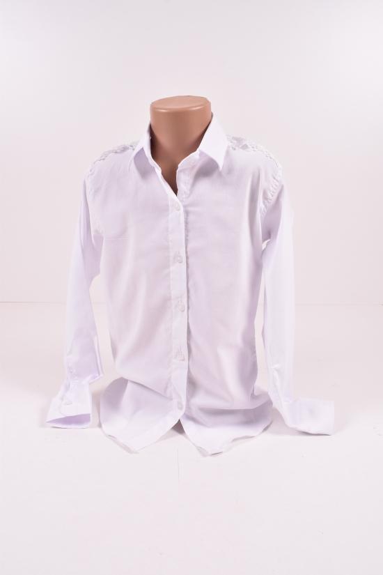Блузка трикотажная для девочки (цв.белый) PITIKI KIDS Роста в наличии : 116,122,128,134 арт.010011