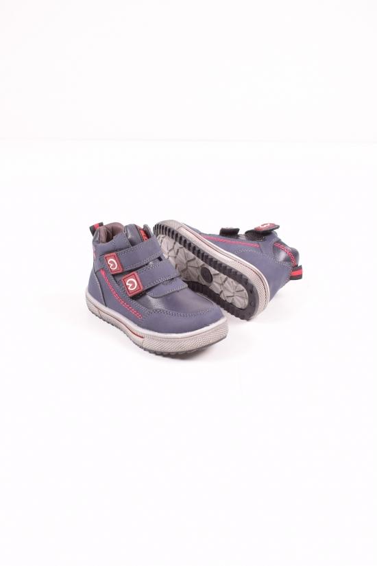 Ботинки для мальчика демисезонные  Bessky Размеры в наличии : 23,24,25,26,27,28 арт.B156-2A