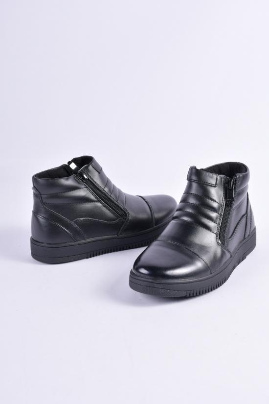 Ботинки для мальчика демисезонные из натуральной кожи KANGFU Размеры в наличии : 31,32,33,34,35,36 арт.T591-D