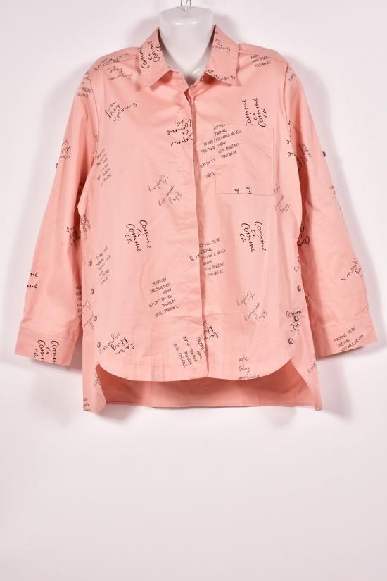 Рубашка женская (цв.пудры) BASE Размеры в наличии : 46,48,50,52,54 арт.A1660C