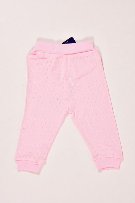 Штанишки детские трикотажные (цв.розовый) Vitmo Baby Размеры в наличии : 62,68,74 арт.18915