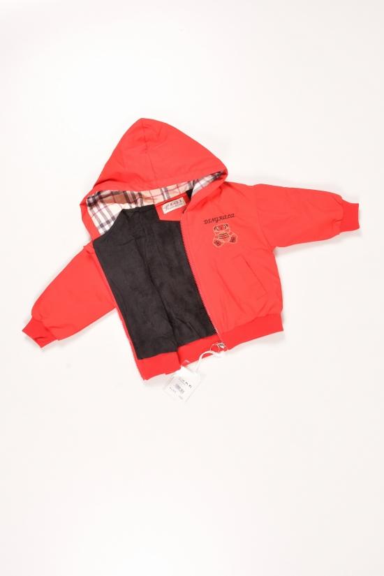 Куртка демисезонная для мальчика  (цв.красный) из плащевки Роста в наличии : 80,86,92,98 арт.HELLO