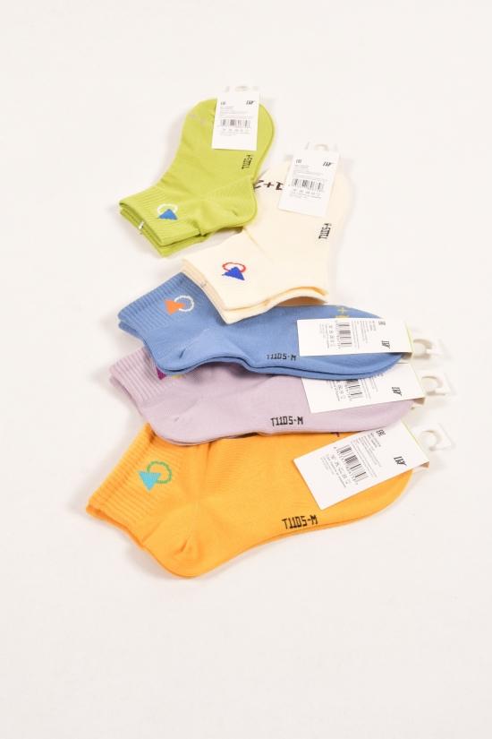 Носки для девочки всесезонные от 5 до 8 лет арт.C675-5