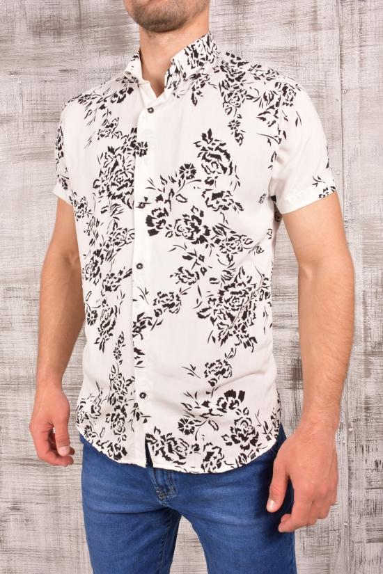 Шведка мужская (цв.белый/черный) CUKUR Размеры в наличии : 42,44,46 арт.8060101