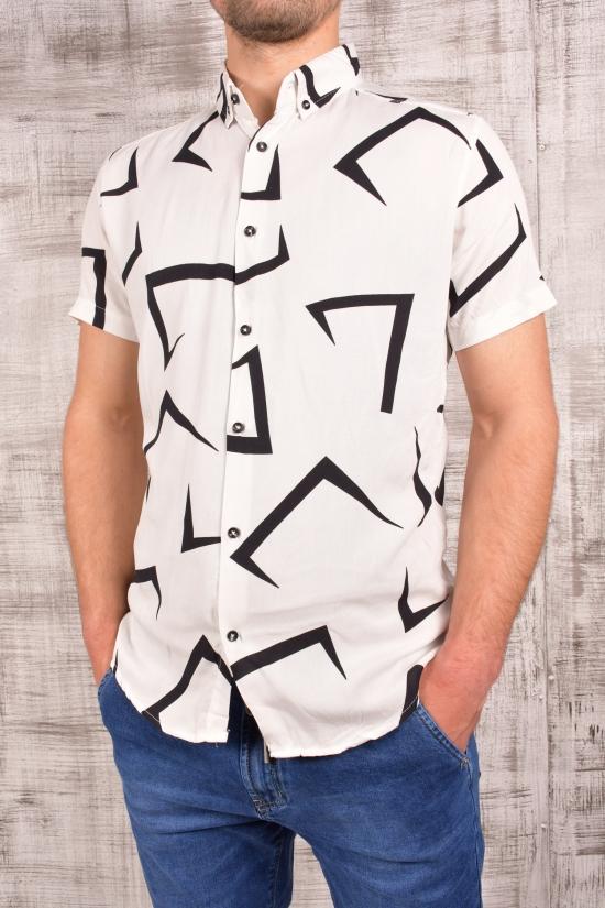 Шведка мужская (цв.белый) CUKUR Размеры в наличии : 42,44,46,48,50 арт.8060103