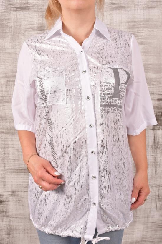 """Блуза женская (цв.белый) """"ANGORA"""" Размеры в наличии : 48,50,52,54,56 арт.3755"""