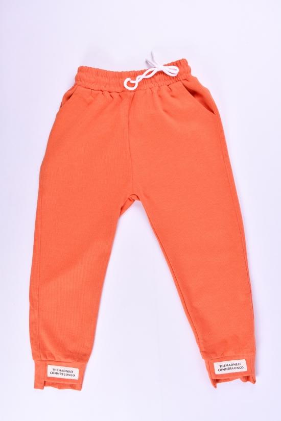 Штаны спортивные для девочки (цв.оранжевый) трикотажные KUYADAN Рост в наличии : 128, 134, 146 арт.566
