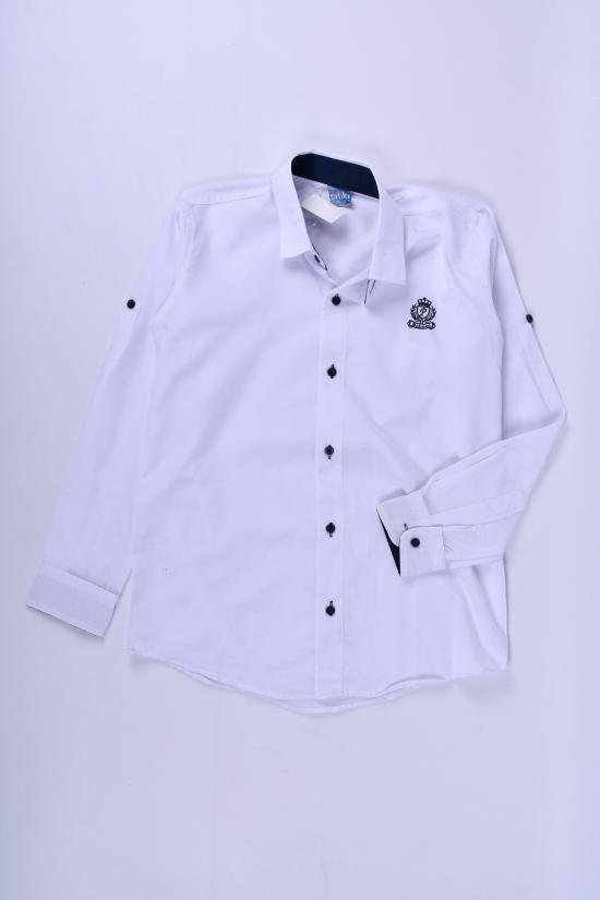 Рубашка для мальчика (цв.белый) Pitiki kids Рост в наличии : 134, 140, 146, 152 арт.009603