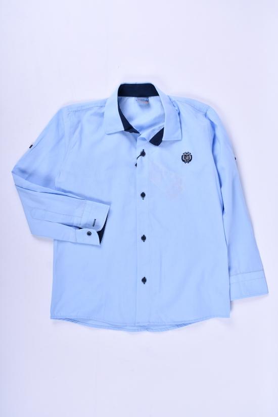 Рубашка для мальчика (цв.голубой) Pitiki kids Рост в наличии : 122, 128, 134, 140 арт.009605