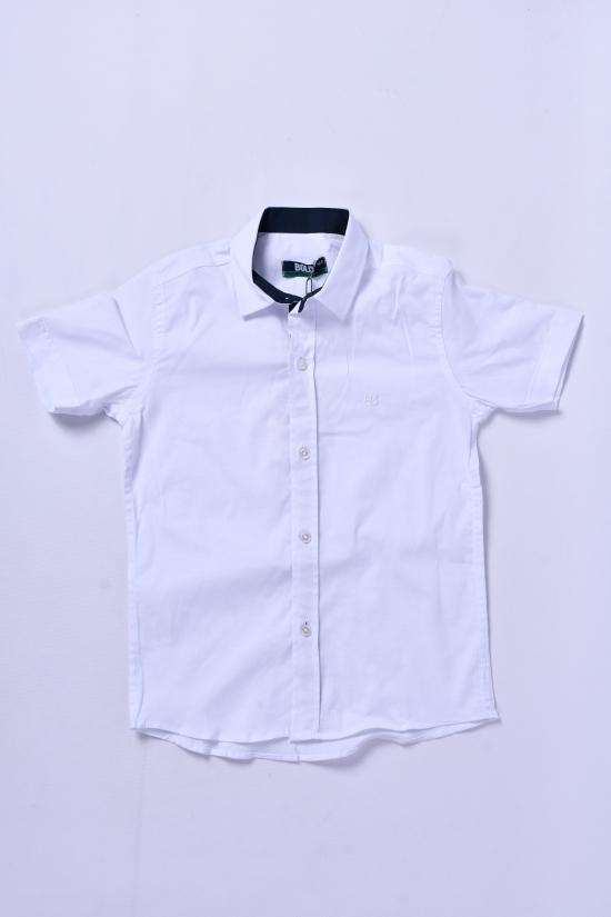 Рубашка для мальчика (цв.т.синий) BOLD Рост в наличии : 110, 116, 122, 128 арт.14752