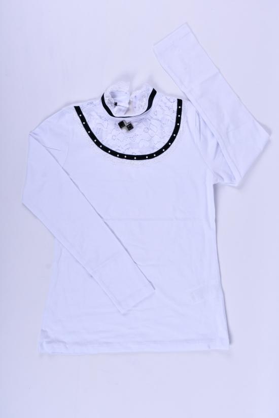 Блузка для девочки (цв.белый) BLUE LAND Рост в наличии : 152, 164 арт.177