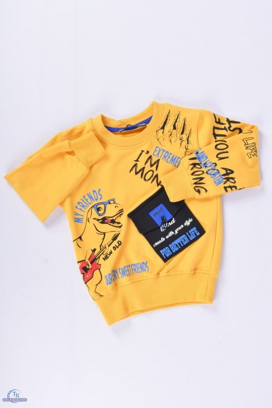 Батник для мальчика (цв.желтый) трикотажный BLUE LAND Рост в наличии : 86, 92, 98, 104 арт.10929