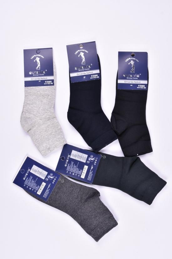Носки мужские всесезонные Aura Via размеры 39-46 (Cotton 90%,Elastane 5%,Polyamide 5%) арт.FZ080