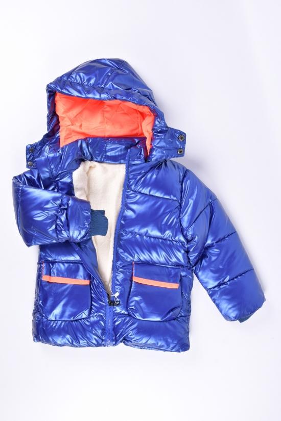 Куртка для девочки (цв.синий) из плащевки зимняя Рост в наличии : 98, 104, 110, 116, 122 арт.2021-53