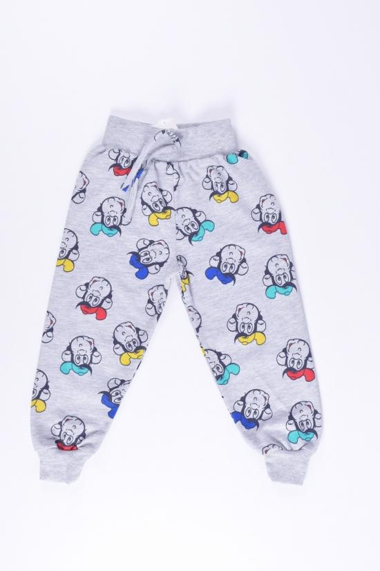 """Штаны для мальчика трикотажные """"ECE kids"""" Рост в наличии : 86, 92, 98, 104, 110 арт.524"""