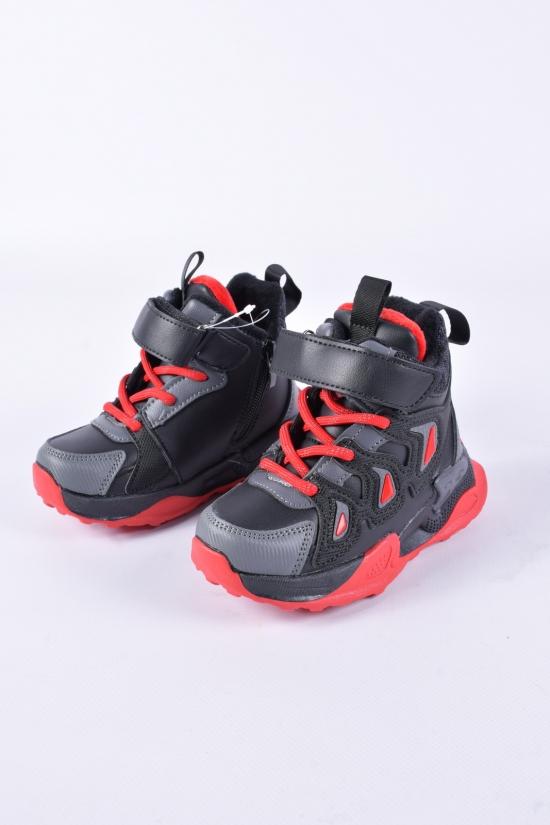 Ботинки для мальчика W.niko с микро-мехом Размеры в наличии : 26, 27, 28, 29, 30, 31 арт.BM20068-2
