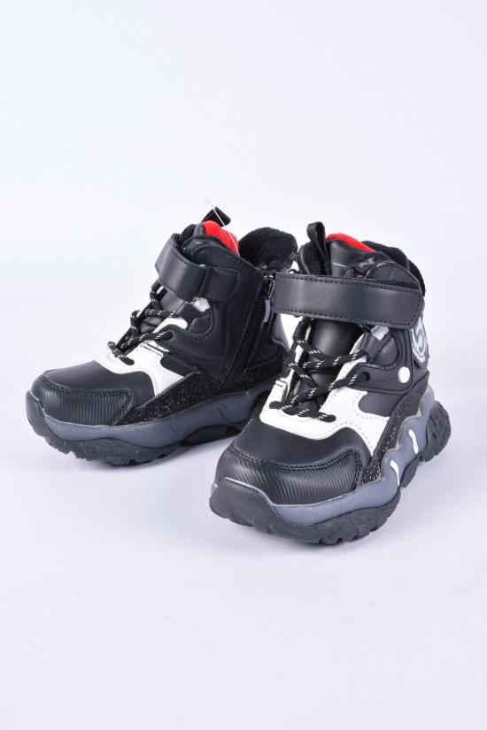 Ботинки для мальчика W.niko на меху Размеры в наличии : 26, 27, 28, 29, 30, 31 арт.BM20162-2